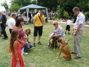 Sir Adrian and Lady Johns with Dogs and Visitors