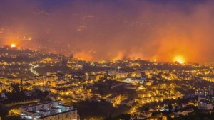 Funchal wildfire